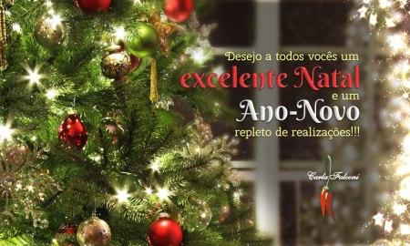 Carla Falconi - Natal e Ano-Novo 2012